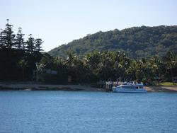 3419-daydream island jetty