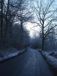 3460-frosty lane