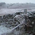 3472-frozen landscape