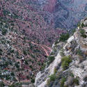 3162-grand canyon walking trails