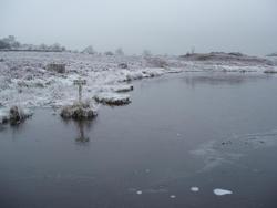 3484-thin ice
