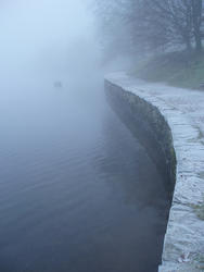 3496-misty lake