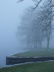 3498-foggy day