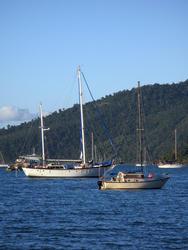3407-muddy bay boat moorings