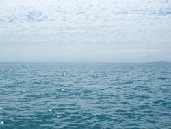 4357   ocean view