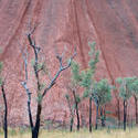 4113-uluru details