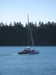 3412-camira sailing cat