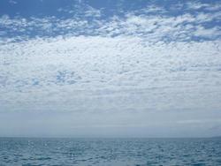 4359   ocean horizon