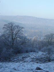 3516-lakeland winter scene