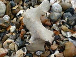 4602   beach pebbles