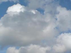 4590   cloudy summer