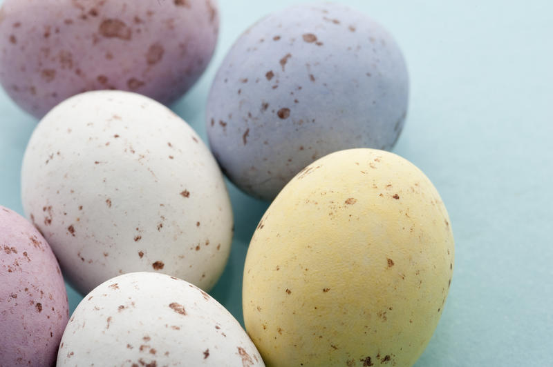 Closeup of five colourful speckled Easter Mini Eggs in sugared candy on a blue background