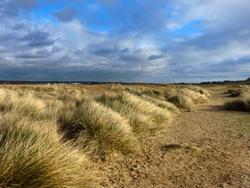 5015   deserted winter landscape