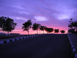 4436   egypt sunset