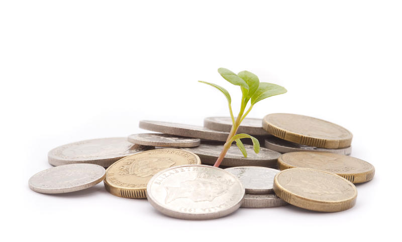 concept image: financial growth, a pile of coins and a seedling growing from them