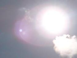 4585   full sun