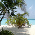 4428   maldives beach