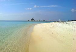 4522   maldivian beach