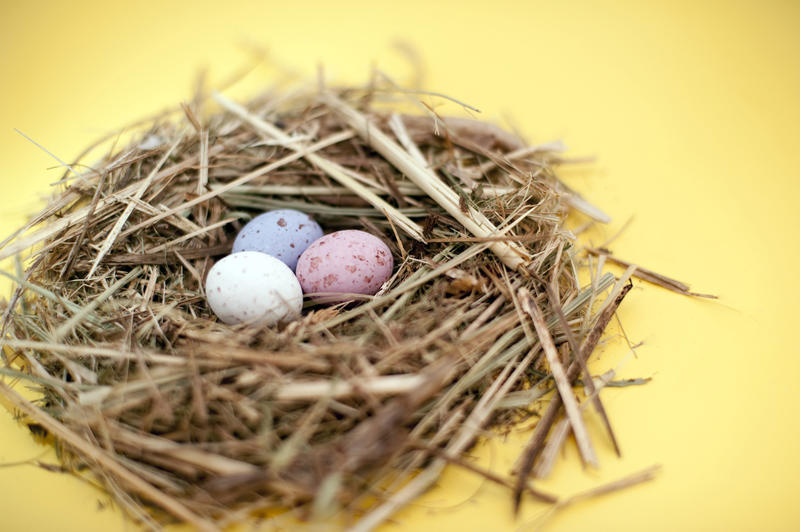 ... eggs of speckled sugar candy photo title mini egg nest keywords