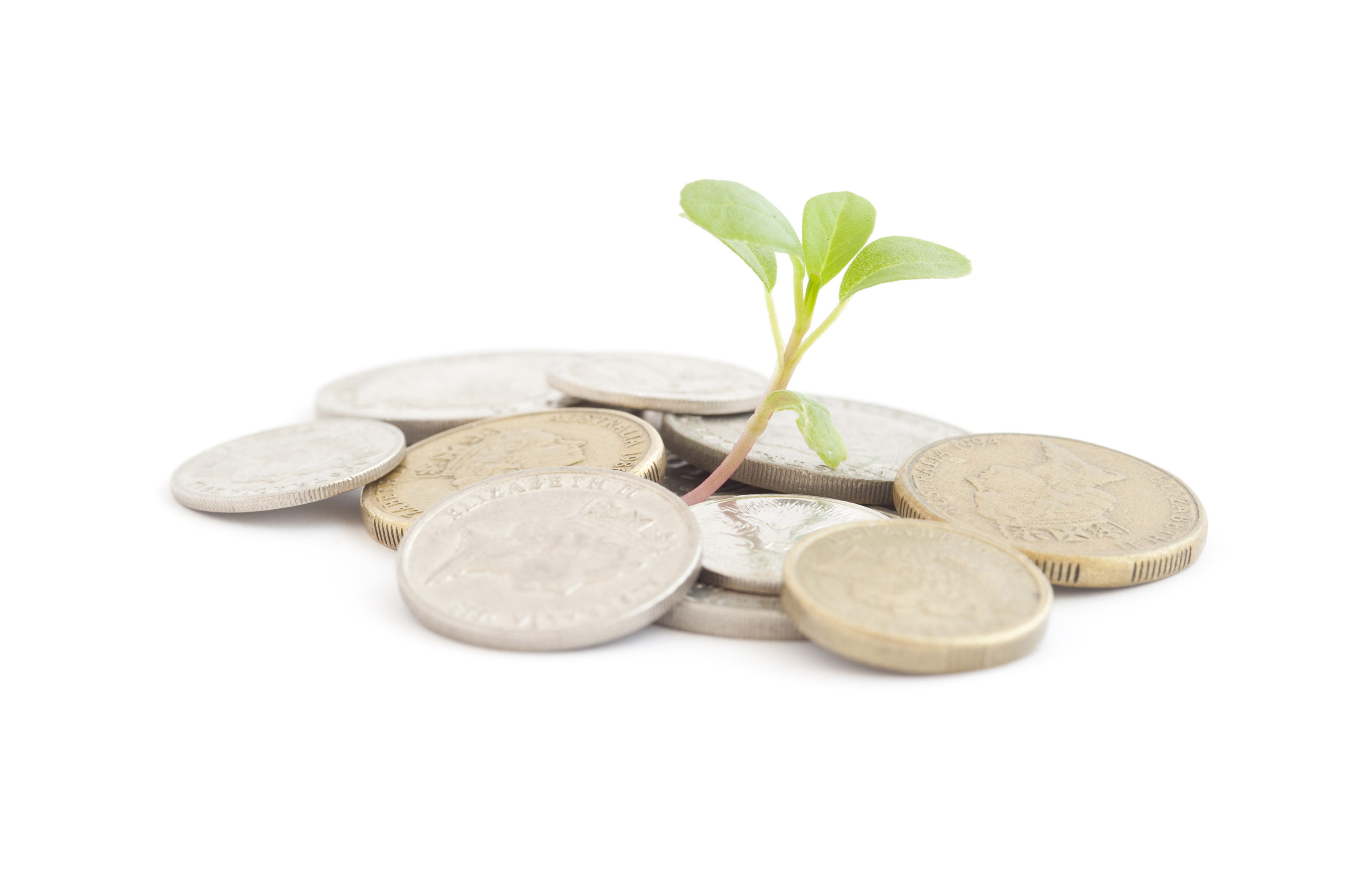 money plant consulting Consulting services for plant construction project  a money value was then  assigned in an evaluation of potential losses should the outcomes fail to be.