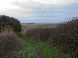 5037   pathway to harbour