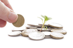 4977   growing savings