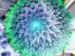 4462   solarised cactus