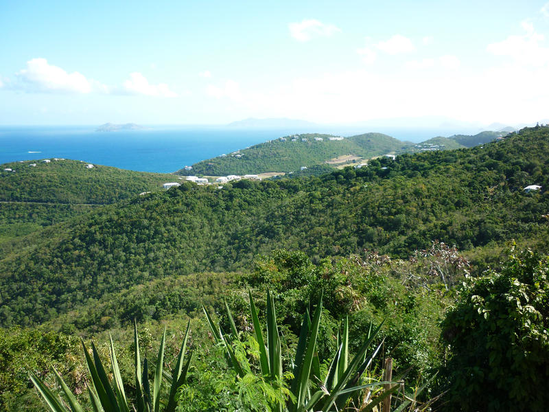 looking out across the island of st thomas from a hill top view point