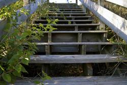 4993   stairway