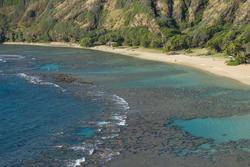 5502   Hanuma Bay Corals