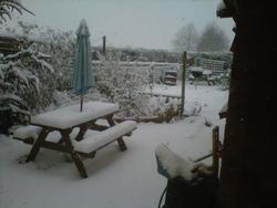 6531   back garden under snow