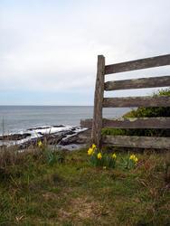 5800   headland fence