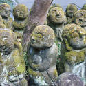 6050   Cute Otagi Nenbutsu ji Statues