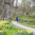 7576   Man running in Bute Park, Cardiff