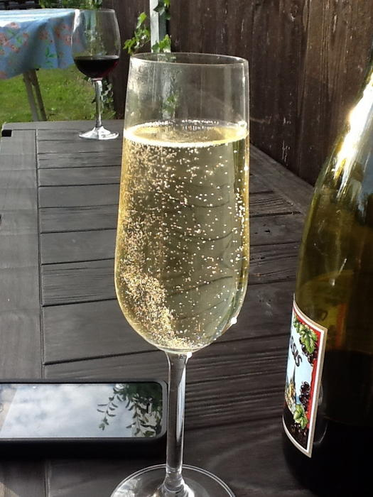<p>&nbsp;A Glass of bubbly champagne in the garden&nbsp;</p>A champagne glass full of bubbles placed on garden bench