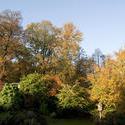 5163   Colours Of Autumn Or Fall