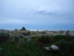 5806   storm beach landscape