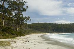 5892   beach fortescue bay