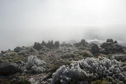5828   frosty mount wellington