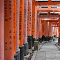6055   Kyoto Torii gates
