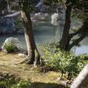 6043   Japanese Garden