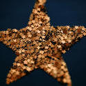 6814   Golden Christmas star
