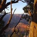6175   grand canyon view