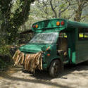 5517   Grass skirted bus