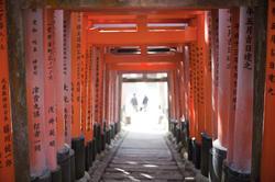 6062   torii gate tunnel