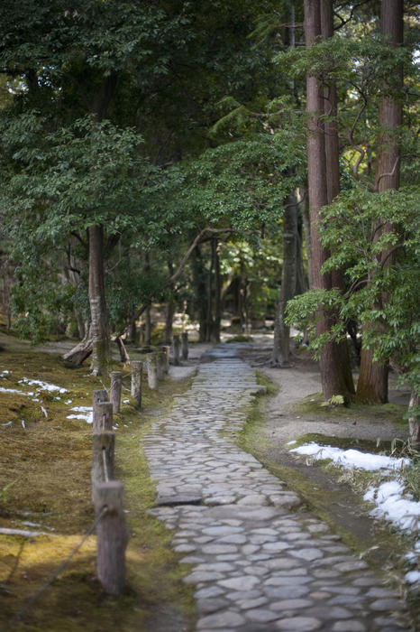 Free stock photo 6066 isuien garden path freeimageslive for Formal japanese garden