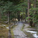 6066   Isuien Garden Path