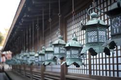 6074   Kasuga taisha metal lanterns