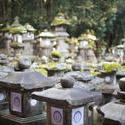 6076   Kasuga Taisha Lanterns