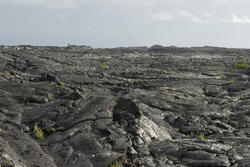 5528   Solidified Lava Fields